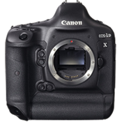 Canon 1D X in stock