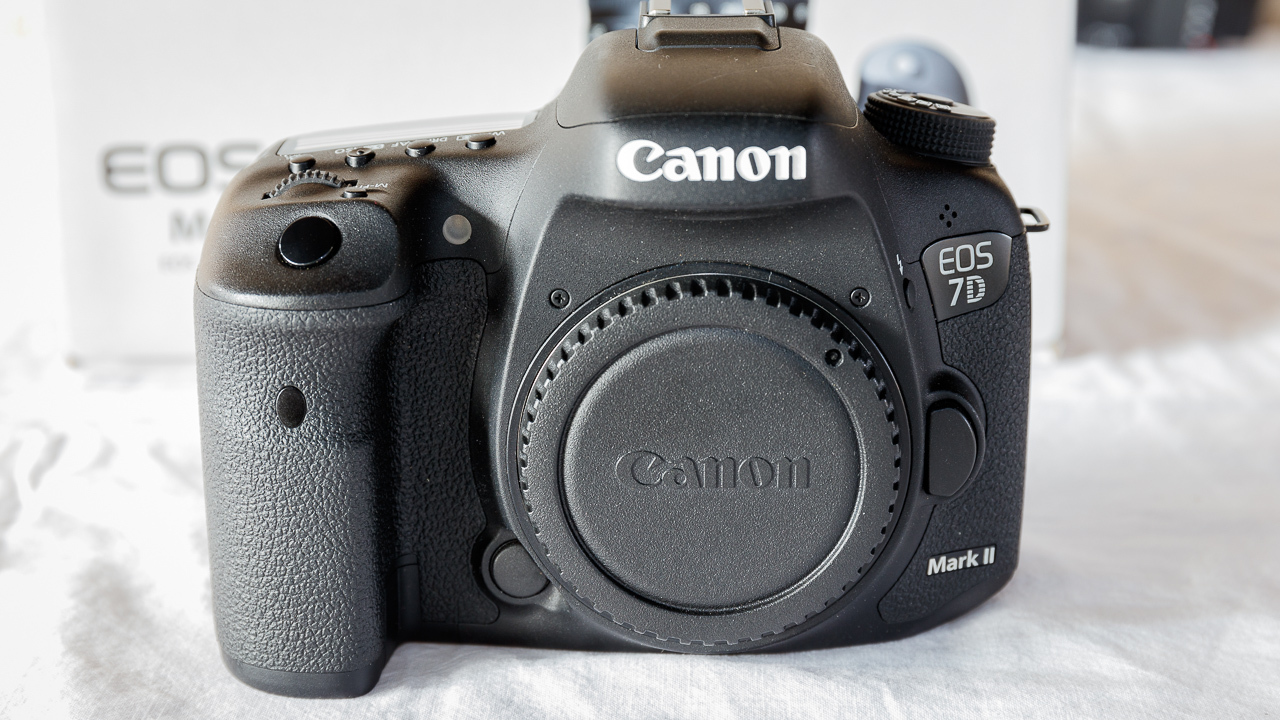 A short course in canon eos digital rebel photography