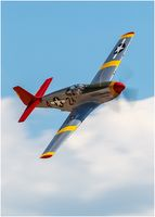 P51 Mustang Red Tail