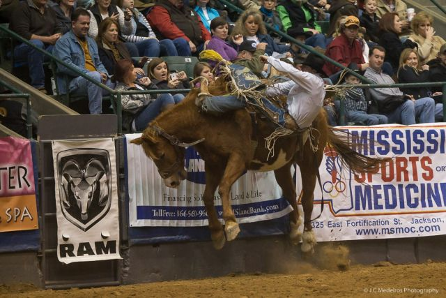 2014 Dixie National Rodeo Fm Forums